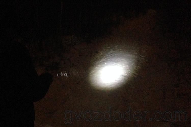 Led Lenser i6ER освещает тропинку в лесу