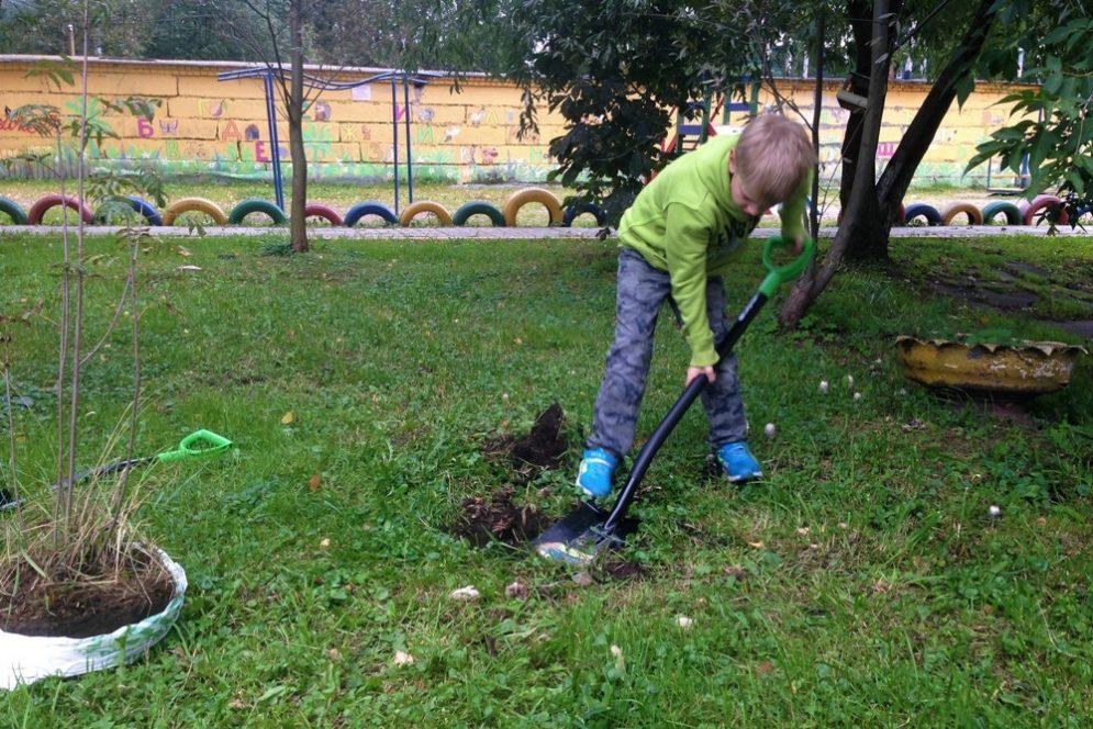 Лопаты Сибртех не боятся крепких грунтов